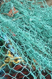 Fishing Nets at St. Agnes